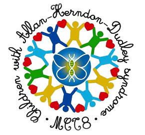 logo-mct8-italia